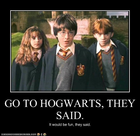 GO TO HOGWARTS, THEY SAID. It would be fun, they said.