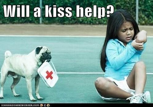 boo boo dogs first aid healing help injuries kisses pug pugs - 6273472000