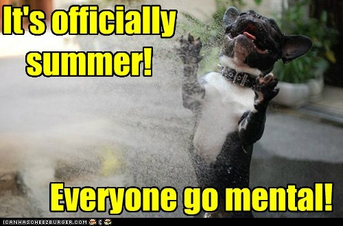 best of the week,dogs,french bulldogs,Hall of Fame,happy,mental,schools-out,sprinkler,summer,water,yay