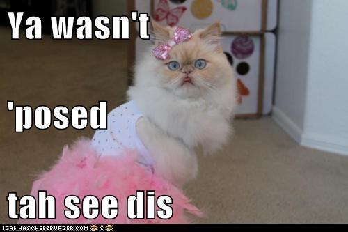 drag dress up girl hide secret - 6274258688