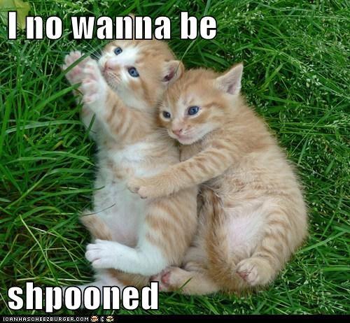 cuddle hug love romance spoon - 6274274816