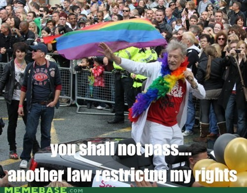 gandalf,gaystuff,you shall not pass,laws,vote yes or no depending