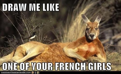 Draw Me Like One Of Your French Girls Animal Comedy Animal