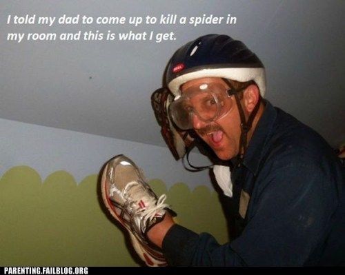 dad,protective gear,shoe,spider