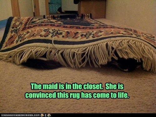 The maid is in the closet. She is convinced this rug has come to life.