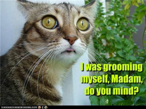 bath bathe grooming lick madam nude polite rude - 6276643072