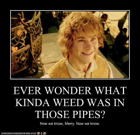 EVER WONDER WHAT KINDA WEED WAS IN THOSE PIPES? Now we know, Merry. Now we know.