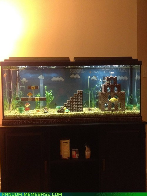 best of week Fan Art fandom fish tank Super Mario bros video games - 6276714752