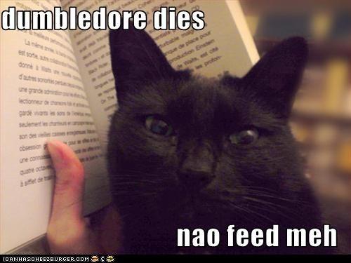 book classic classics dies dumbledore feed food Harry Potter literature read spoiler - 6276826624