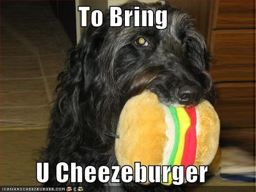 Cheezburger Image 627683584
