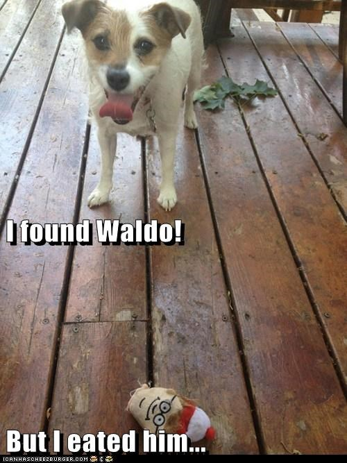 best of the week but i eeted it dogs Hall of Fame head jack russell terrier stuffed toys toy waldo wheres waldo - 6276994048
