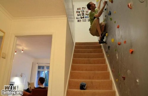 climbing,decoration,g rated,home,wall,win