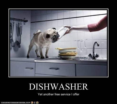 DISHWASHER Yet another free service I offer