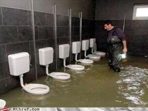 bathroom clogged clogged toilet restroom stopped up stopped up toilet taco bell toilet - 6277424128
