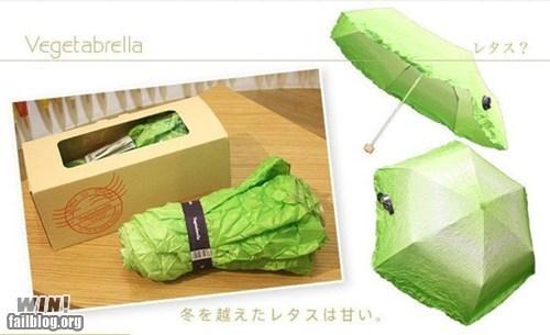 clever design lettuce umbrella vegetable - 6277511680
