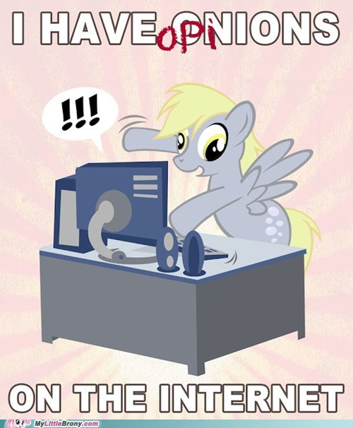 Bronies derpy everypony opinions the internets - 6277750528