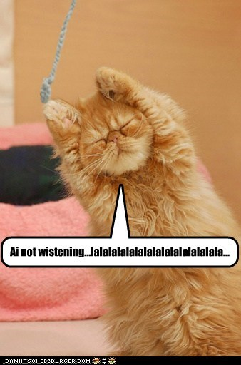 Cats hear i-cant-hear-you ignore la la la listen lolcats noise not listening - 6278463744
