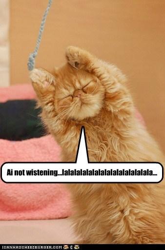 Cats hear i-cant-hear-you ignore la la la listen lolcats noise not listening - 6278463744