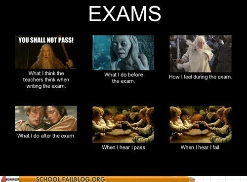 exams,Hall of Fame,Lord of the Rings,what you think