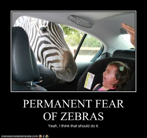 PERMANENT FEAR OF ZEBRAS Yeah, I think that should do it.