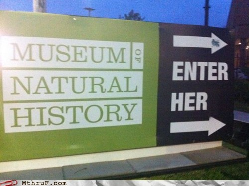 museum of natural history,herstory,museum