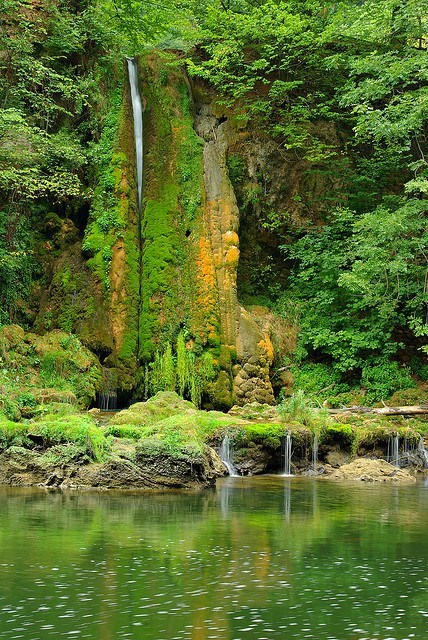 canyon,Forest,lake,moss,romania,waterfall