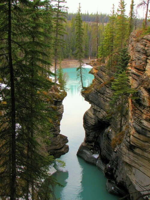 Canada,cliffs,Forest,national park,river