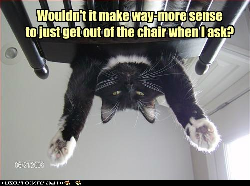 ask Cats chair chairs jerk lolcats mean move push rude shove - 6279844864