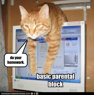 homework internet captions computer parental block Cats - 6280306688