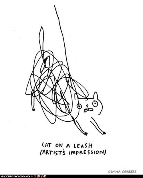 artists,blobs,Cats,disaster,drawings,gemma correll,leash,leashes