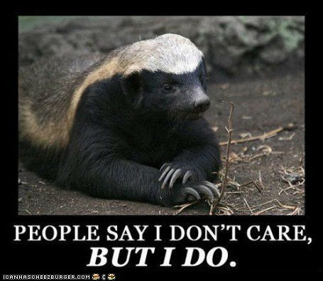 badgers care caring honey badger Memes - 6280545792
