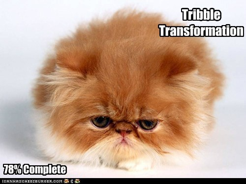 Tribble Transformation 78% Complete