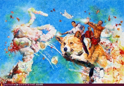 Battle,best of week,corgi,drugs,painting,wtf