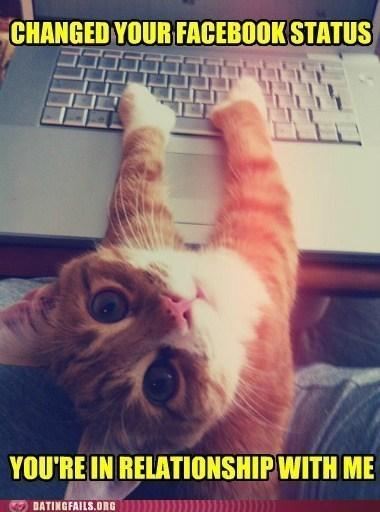 cat facebook status Hall of Fame hes-taken relationship status - 6280837888