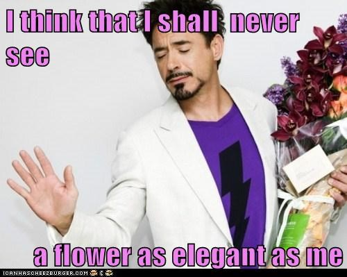 actor,celeb,funny,robert downey jr