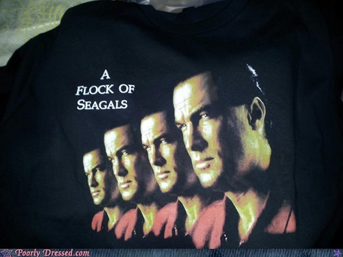 80s flock of seagulls Music pun shirt Steven Segal - 6281229824