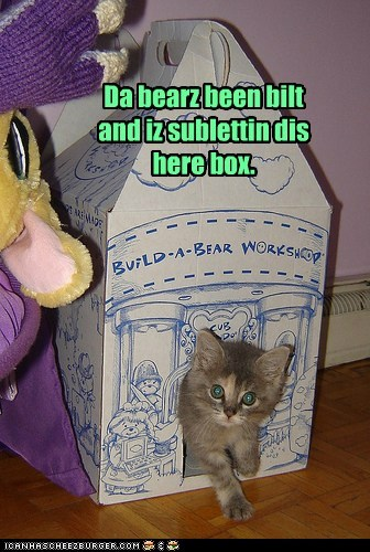 Da bearz been bilt and iz sublettin dis here box.