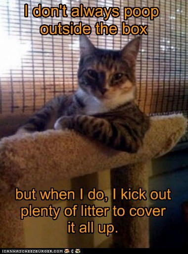 Cats gross litter litter box Memes messes messy poop the most interesting cat the most interesting man in the world - 6283137280