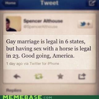america animal love facebook gay marriage homosecks twitter - 6283220736