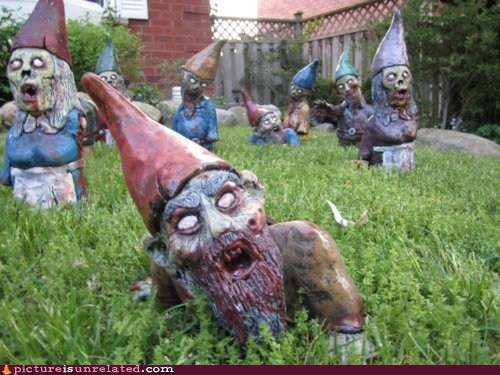 best of week,Dawn of the Dead,lawn gnomes,wtf,zombie