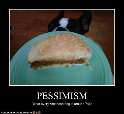 Cheezburger Image 6283264000