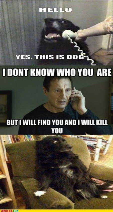 best of week From the Movies liam neeson taken yes this is dog