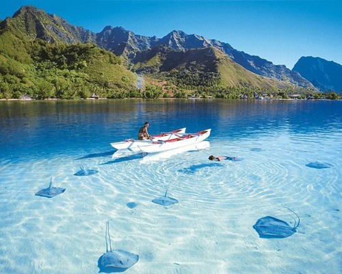 boat,crystal clear water,lake,mountain,sting ray