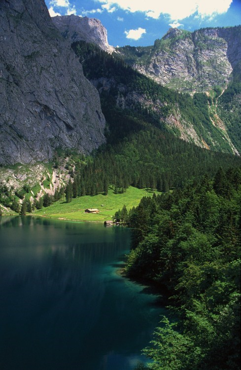 alps Forest lake mountain Switzerland - 6283474176