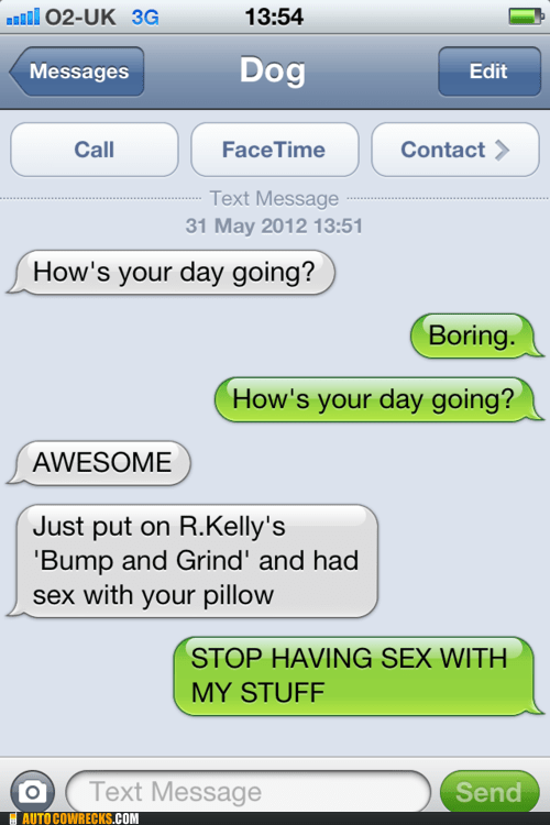 bump and grind Pillow r kelly texts from dog - 6283547904
