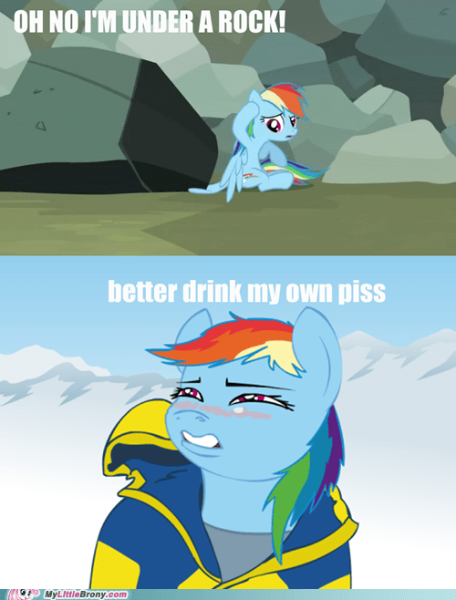bear grylls drink my own piss meme rainbow dash - 6283741952