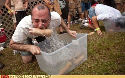 bin bobbing contest pig feet water - 6283974144