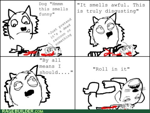 dogs gross Rage Comics roll smell - 6284119296