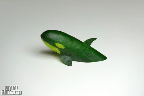 cucumber cute food whale - 6284252416