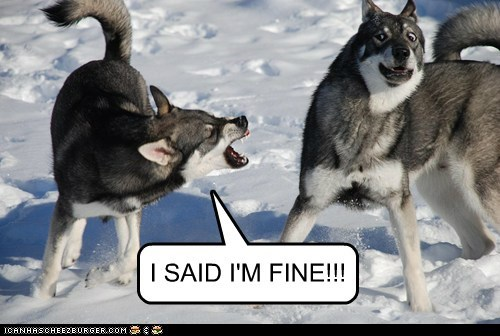 I SAID I'M FINE!!!
